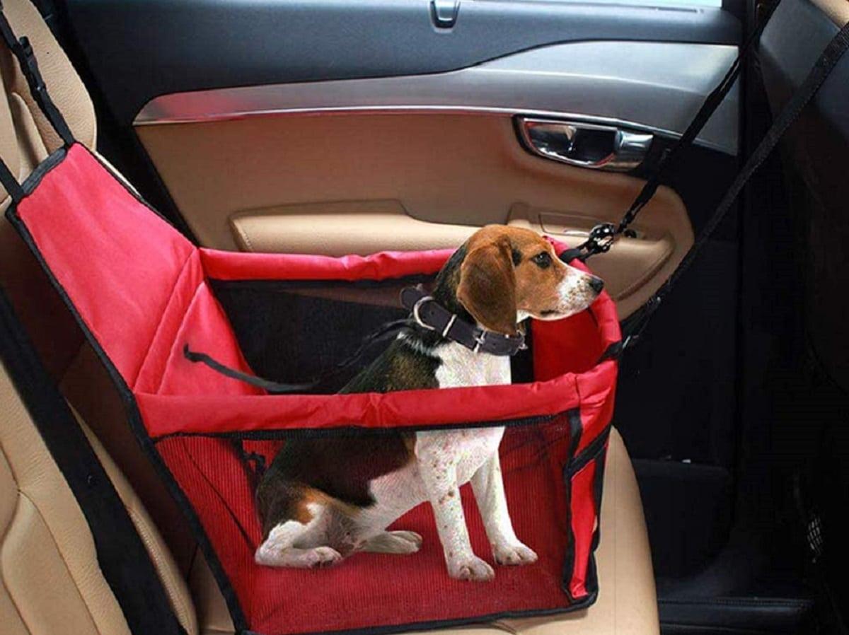 Asientos para ir los perros en coche