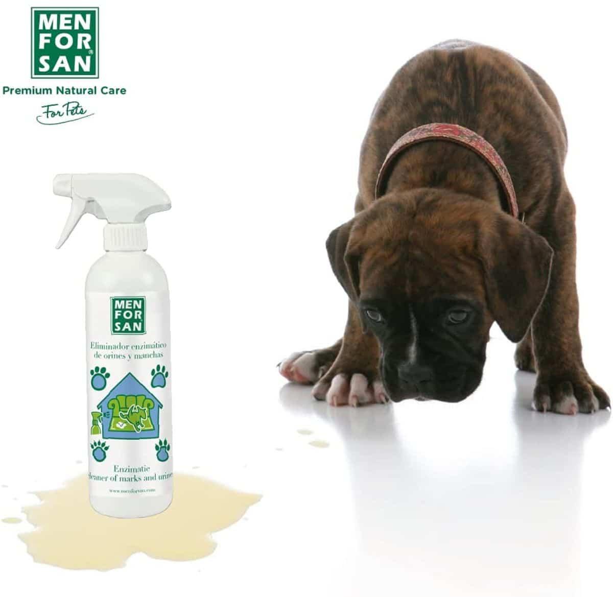 Výrobky, ktoré sa majú zbaviť zápachu psieho moču