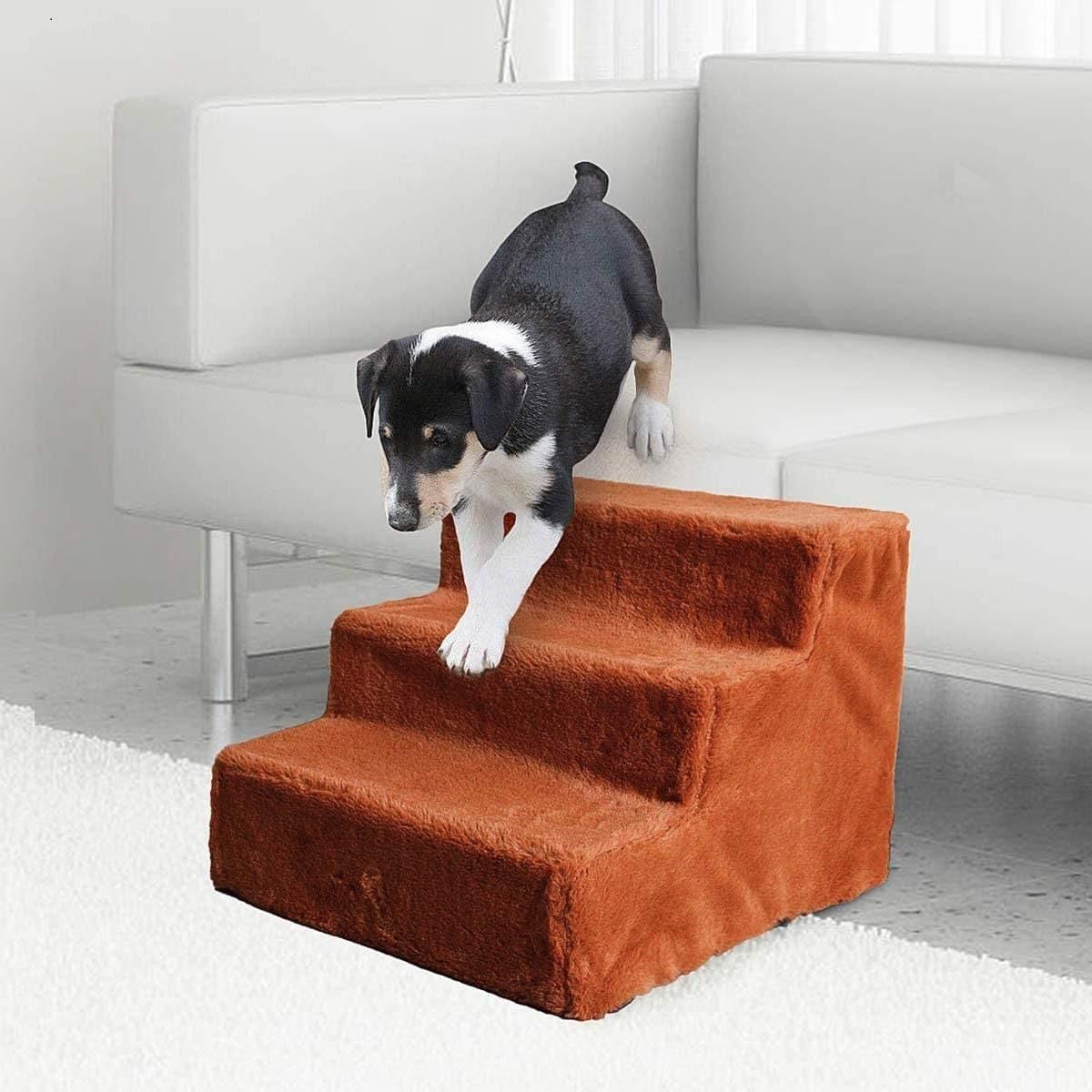 Ventajas de las escaleras para perros